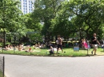 Sunning in Madison Park