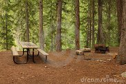 forest-picnic-area-6067916
